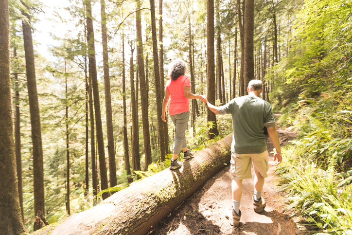Guide to Hiking at Sam Houston National Forest
